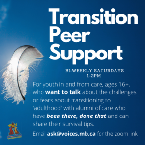 Transition Peer Support @ zoom
